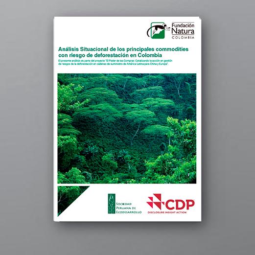 Análisis situacional de los principales commodities con riesgo de deforestación en Colombia
