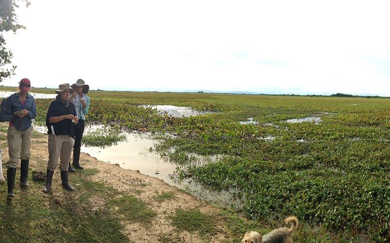 Acuerdo De Conservacion - Finca La Florida Hato Corozal Casanare
