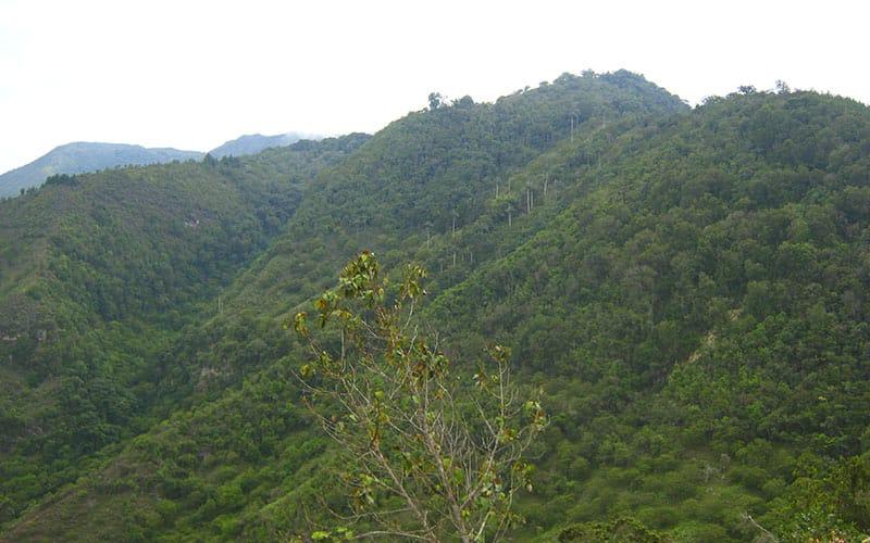 Reserva La Montaña Mágica Participante Programa ARA