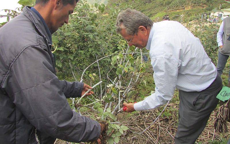 Asistencia Técnica Al Productor Rural.