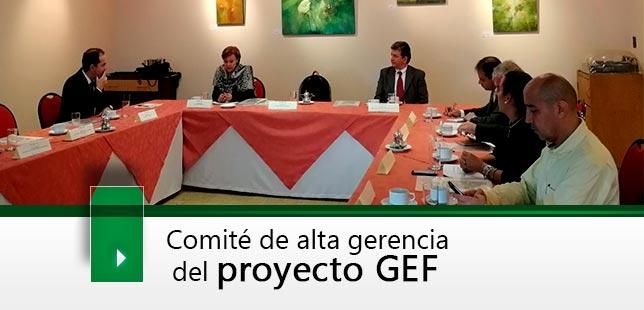 Comité De Alta Gerencia Del Proyecto GEF: ¨Manejo Sostenible Y Conservación De La Biodiversidad Acuática En La Cuenca Magdalena – Cauca¨