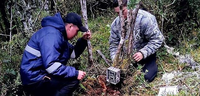 Aves Y Mamíferos Son Encontrados En El Primer Monitoreo De Fauna Silvestre En Guatavita