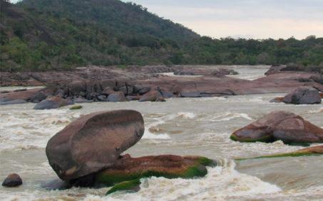 Conservacion-de-la-biodiversidad-y-fortalecimiento-de-la-gobernanza-en-la-Reserva-de-Biosfera-El-Tuparro
