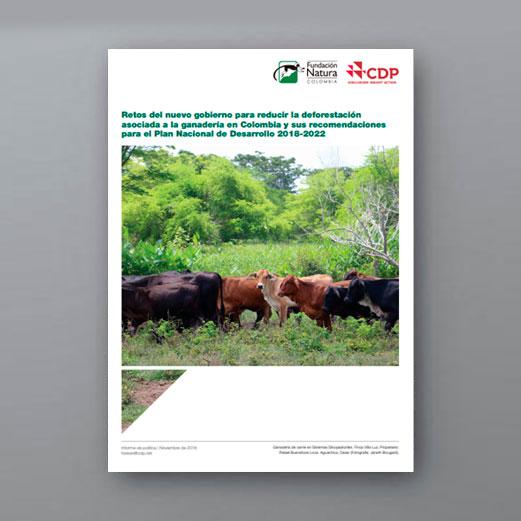 Retos Del Nuevo Gobierno Para Reducir La Deforestaciónasociada A La Ganadería En Colombia Y Sus Recomendacionespara El Plan Nacional De Desarrollo 2018-2022