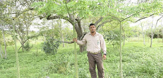 Un Quinquenio Adquiriendo Experiencias Y Aportando A La Restauración Ecológica Del Bosque Seco Tropical