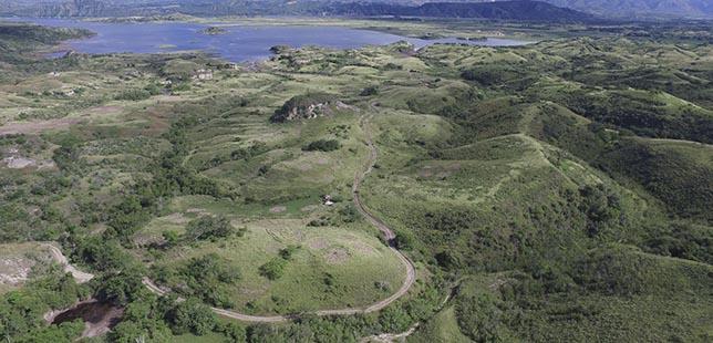 ¿Qué Sigue Luego Del Plan Piloto De Restauración Ecológica Del Bosque Seco Tropical De La Central Hidroeléctrica El Quimbo?
