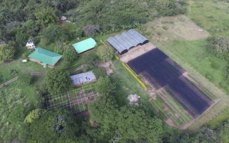 proyecto-Plan-de-restauración-de-Bosque-Seco-Tropical-en-el-Huila-(Fase-II)-fundacion-natura