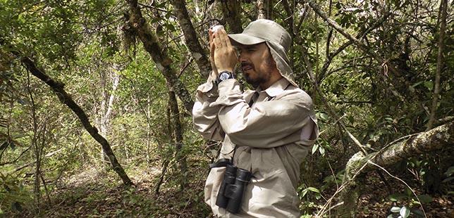 Termina El Trabajo De Campo De La Primera Tesis Doctoral Desarrollada En La Zona De Restauración Ecológica Del Bosque Seco Tropical De La Central Hidroeléctrica El Quimbo