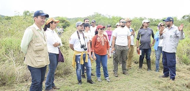 Taller De La Red De Bosque Seco Tropical De Colombia En El Área De Compensación Ambiental De El Quimbo