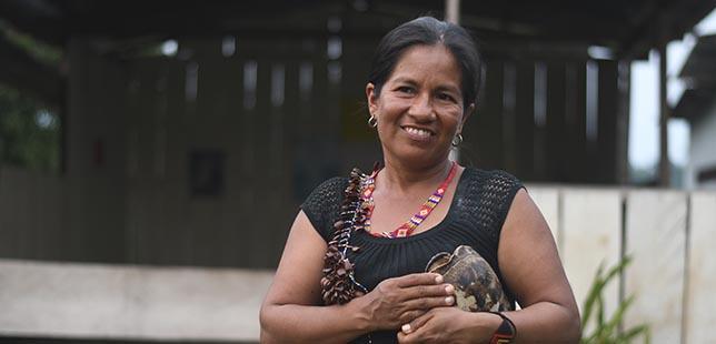Gobernanza Territorial Intercultural, Una Apuesta Para El Cuidado De La Amazonía