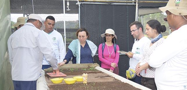 Primeros Resultados Del Proyecto De Investigación Desarrollado Por La Universidad Nacional En El área De Compensación Ambiental De El Quimbo
