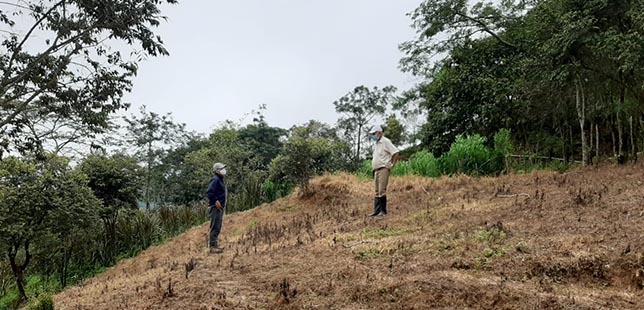 Productores Del Piedemonte Casanareño Siguen Comprometidos Con El Medio Ambiente