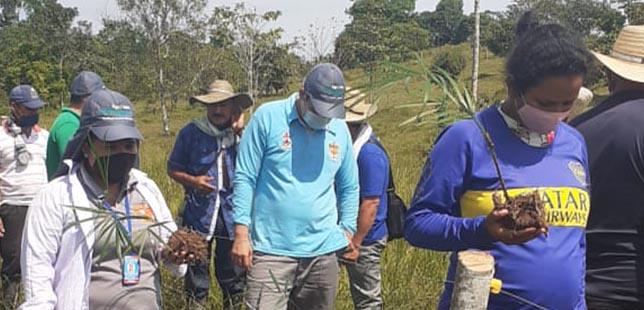 Amazonía 2.0: En La Distancia Continuamos Fortaleciendo Capacidades