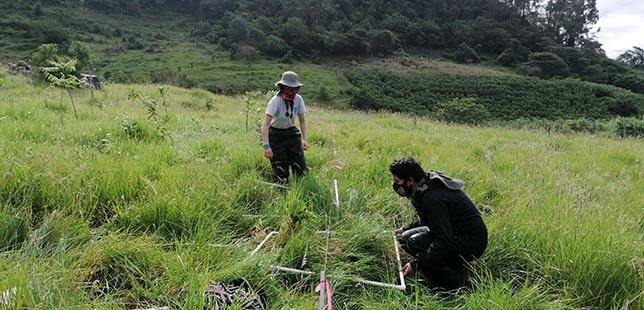 Culmina Primer Año De Monitoreo De La Restauración Por Compensaciones Ambientales Con EPM
