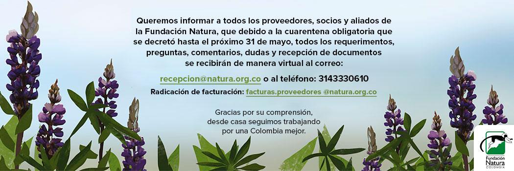 Información Importante Fundación Natura Colombia