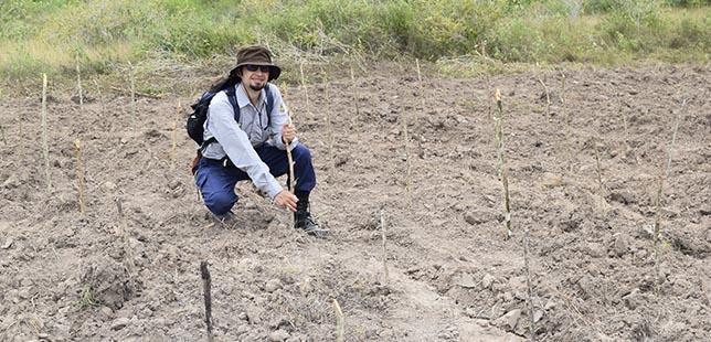 Avanza Tercera Tesis Doctoral En La Zona En Restauración Ecológica De Bosque Seco Tropical De La Central Hidroeléctrica El Quimbo De Enel-Emgesa